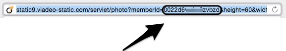 Viadeo Member ID url